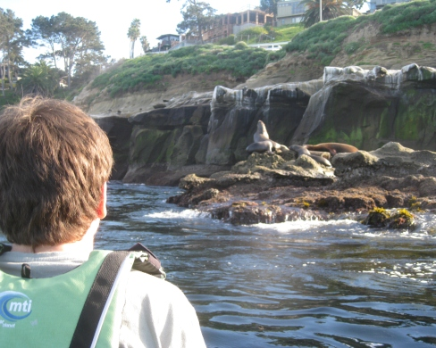 2. Kayaking amongst the tiger sharks and sea lions in San Diego