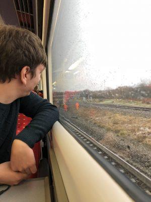 Observing Network Rail's horse herding team