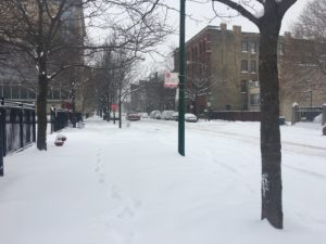 My last Chicago winter