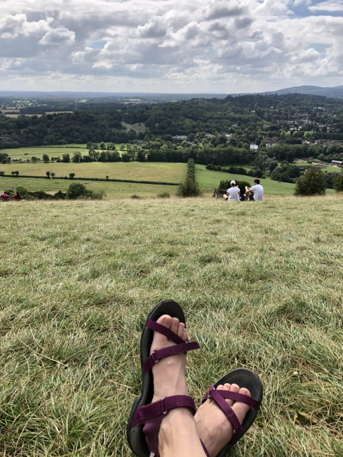 The view from the Box Hill viewpoint