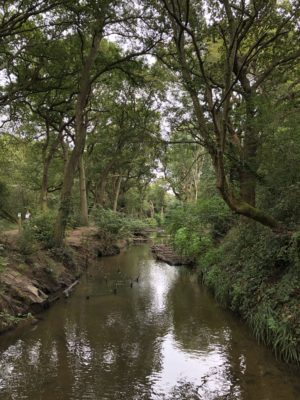 This is Beverley Brook, Peter Grant's girlfriend, from Capital Ring Section 6 and/or Rivers of London